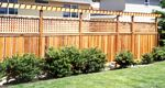 High Fence with Trellis Top