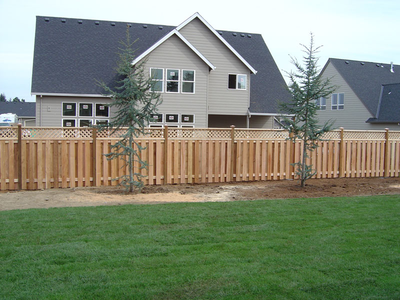 George and Gabe Fences